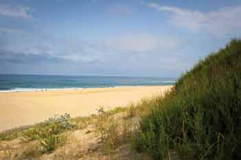 plages dunes marais - sables olonne