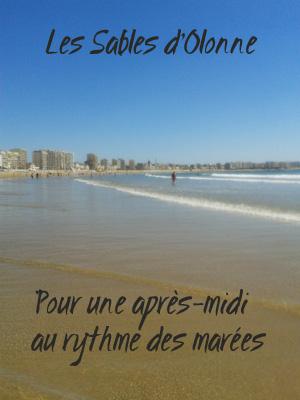 vacances aux sables d olonne